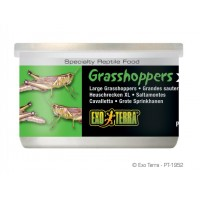 Exo Terra GRASSHOPPERS XL