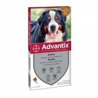 Advantix 40-60 KG