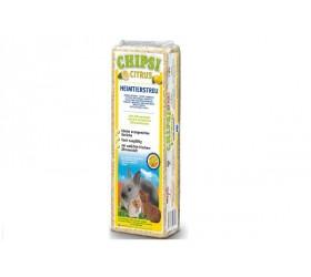 Chipsi CITRUS