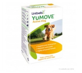 Lintbells YUMOVE ACTIVE