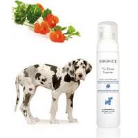 Biogance NO RINSE FOAMER DOGS