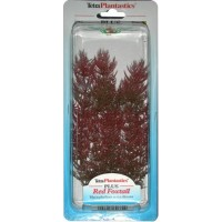 Tetra RED FOXTAIL S